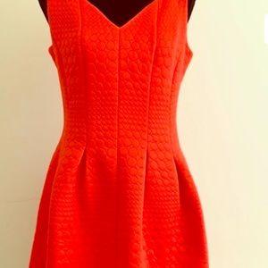 Just...Taylor Orange Fit & Flare Dress